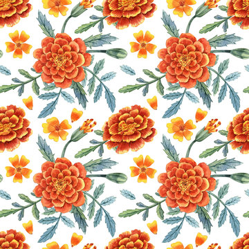 Watercolor hand painted orange marigold seamless pattern. Can be used as print, packaging design, textile, fabric, wrapping paper and so on.