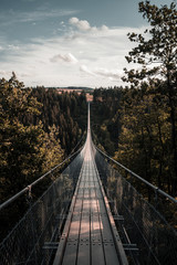 The instagram famous Geierlay suspension bridge in Germany, Europe.