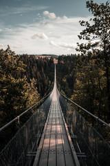 The instagram famous Geierlay suspension bridge in Germany, Europe.