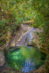Xilitla Jungle and amazing hidden natural pool at Huasteca Potosina in San Luis Potosi, Mexico