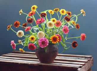 Bouquet of zinnia on a blue background. The flowers in the jar.