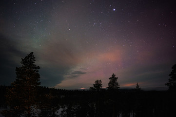 Night sky with stars above boreal forest in Finnish Lapland.