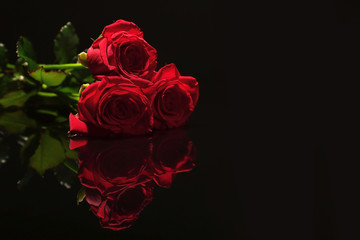 Beautiful red roses on black background. Funeral symbol