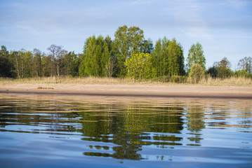 A view of the green trees near the river on a sunny day, Latvia