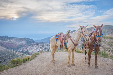 Amazing sunset riding horses at Real de Catorce ghost town in San Luis Potosi, Mexico