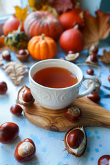 Cozy autumn morning with cup of tea, decorative pumpkins, nuts, corns, chestnuts and autumn leaves on light blue background, teatime, hugge concept, selective focus