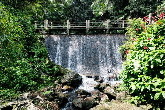 El Yunque National Forest - Puerto Rico