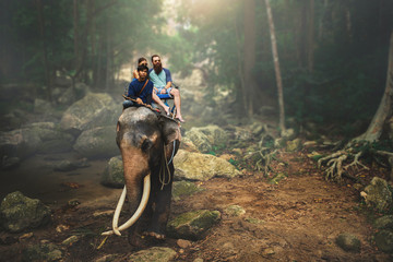 tourist couple riding elephant through thai jungle by river on koh samui thailand