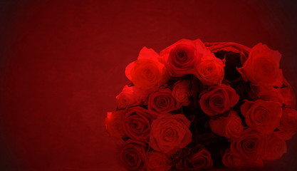 Roses on red background