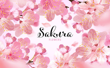 Sakura flowers background template. Vector set of blooming floral for holiday invitations, greeting card and fashion design. Wall mural