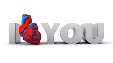 3D illustration of I Heart you text with a human heart