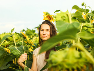 Beautiful gentle young woman in a field of sunflowers , holding sunflowers on the blue sky