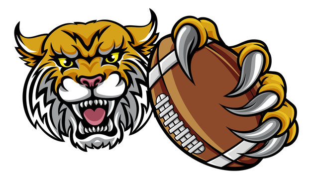 Wildcat Holding American Football Ball