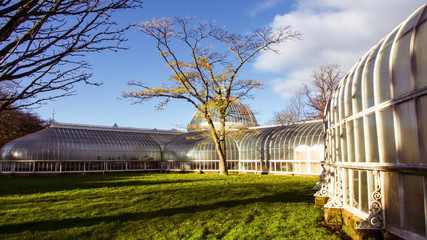 : Bright autumn day at the botanic gardens in the West End of Glasgow.