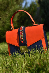 Fotobehang Picknick front view of orange and purple women handbag on green grass