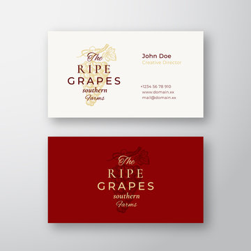 Ripe Grapes Farm Abstract Elegant Vector Sign or Logo and Business Card Template. Hand Drawn Grape Bunch with Leaf. Premium Stationary Realistic Mock Up. Modern Typography and Soft Shadows.