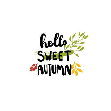 Hello sweet autumn badge isolated design label