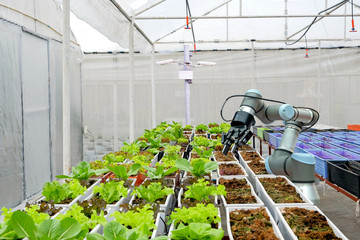 Modern organic farmhouse adopts the technology of robotic industry to apply for used in vegetable plots to work and installed CCTV cameras for monitor, on concept of Smart Farming 4.0
