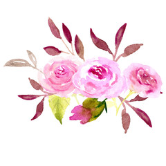Watercolor illustration roses sketch