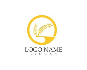 Rice wheat icon logo vector illustration