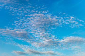 Petits nuages moutonneux Altocumulus en haute altitude (2 à 7 km) sur un ciel bleu azur