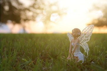 image of magical little fairy in the forest at sunset.