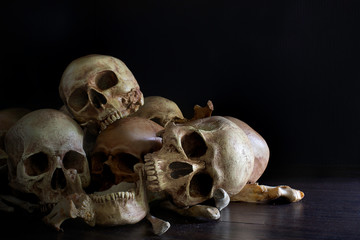 Pile of skulls and bones put on dark wooden plank which has dim light and the dark wall background