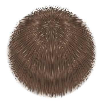 Vector fur sphere
