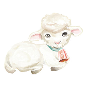 Cute watercolor sheep with bell