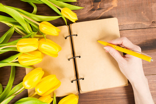 Open notbook with female hands holding yellow pen