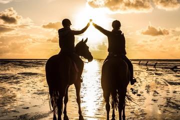 Pferde mit Reiter im Watt am Meer