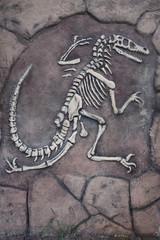Dinosaur skeleton.