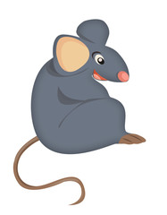 gray mouse sits white background