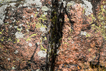 Cracked stone covered with moss