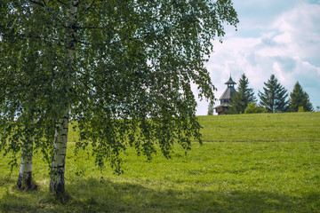 Russian landscape with birch