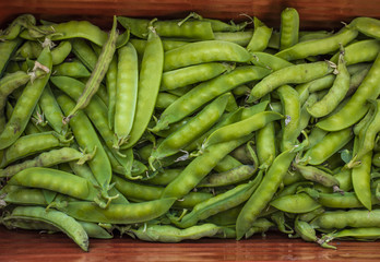 Green pea pods, top view. The harvest of peas. Background, texture
