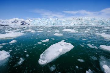 Yakutat Bay, Hubbard Glacier in background.