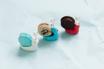 Creative snail decorations with delicious macaroons on blue table