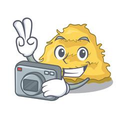 Photographer hay bale mascot cartoon