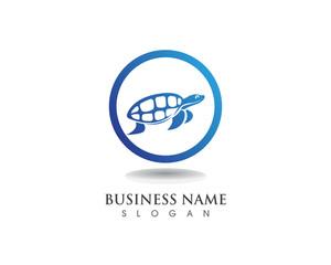 turtle animal cartoon image vector illustration design