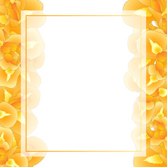 Orange Iris Flower Banner Card Border