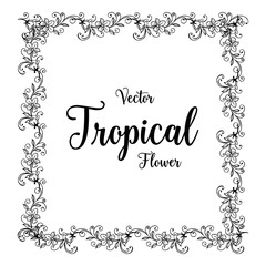 Vector tropical flower card hand draw illustration collection