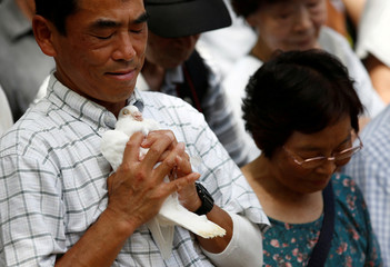 A man holds a dove before releasing it as a symbol of peace at the Yasukuni Shrine for the war dead in Tokyo