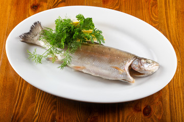 Steamed trout