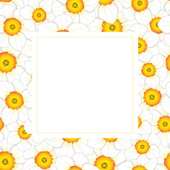 White Daffodil - Narcissus Banner Card