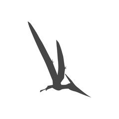 Pterodactyl icon, Vector drawing, Pteranodon bird