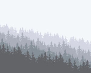 Snowy coniferous forest on a hill with several layers, winter cold colors with space for your text