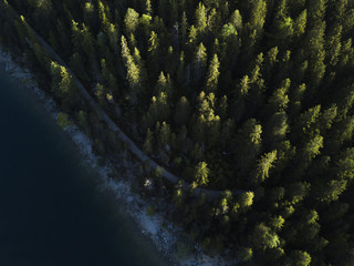 Above the Trees at a Lake in Bavaria