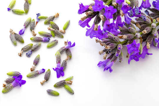 Bouquet of flowers and lavender seeds on white background, isolated.