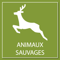 Logo animaux sauvages.